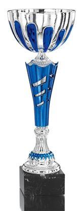 Image de Trophée Coupe