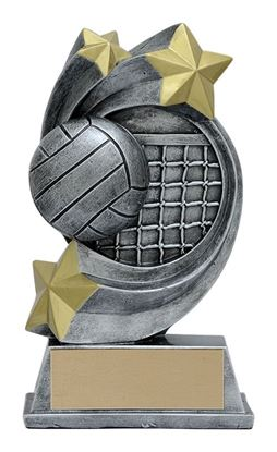 Image de Trophée Volleyball